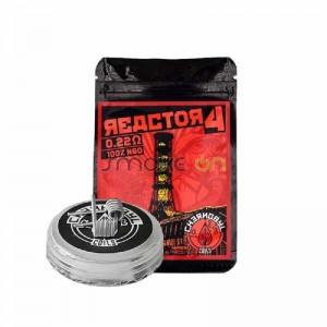 Reactor 4 5x 2,5mm 0.22ohm (2 Uds) - Chernobyl Coils